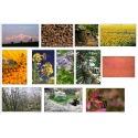 Lot de 12 photos 49x35CM Eric Tourneret